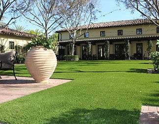 Artificial Grass Gallery
